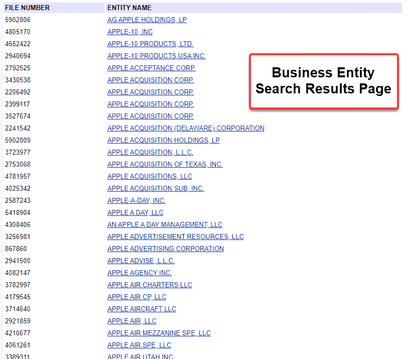 Delaware Entity Search - Step 3 Search results