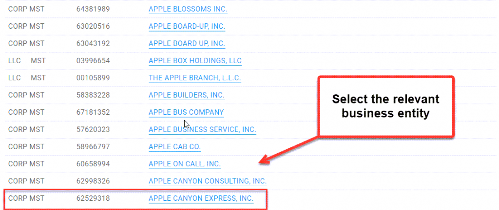 Illinois Secretary of State Business Search - Step 4 Select entity